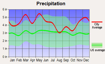 Pleasant View, Tennessee average precipitation