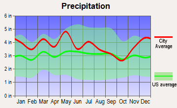 Rogersville, Tennessee average precipitation