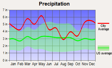 Saltillo, Tennessee average precipitation