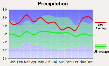 Tennessee Ridge, Tennessee average precipitation