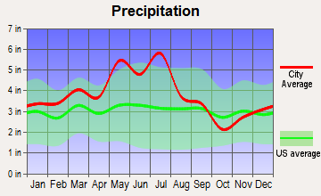 Banner Hill, Tennessee average precipitation