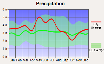 Central, Tennessee average precipitation