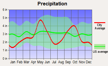 Bellevue, Texas average precipitation