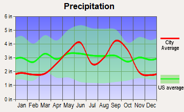 Blue Berry Hill, Texas average precipitation