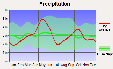 Blum, Texas average precipitation