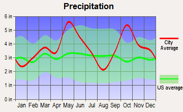 Bonham, Texas average precipitation