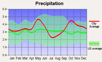 Buffalo, Texas average precipitation