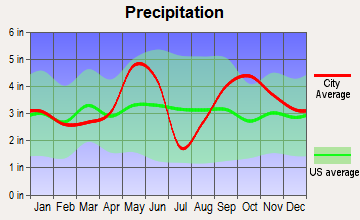 Burton, Texas average precipitation