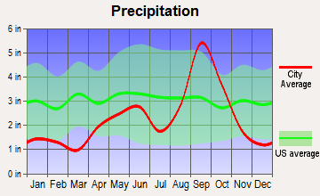 Cameron Park, Texas average precipitation