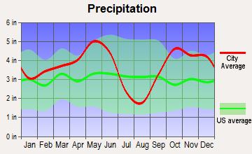 Canton, Texas average precipitation