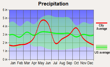 Castle Hills, Texas average precipitation