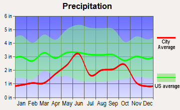 Chula Vista-River Spur, Texas average precipitation