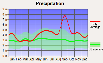 Clute, Texas average precipitation