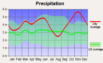De Kalb, Texas average precipitation