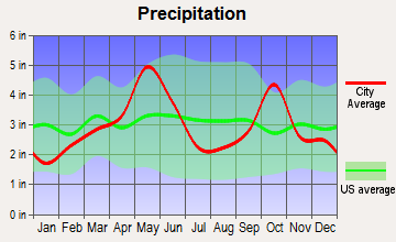 Eagle Mountain, Texas average precipitation
