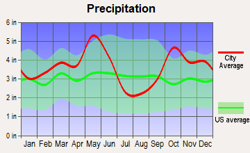 Emory, Texas average precipitation