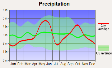 Fair Oaks Ranch, Texas average precipitation