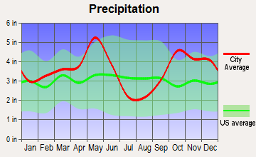 Grand Saline, Texas average precipitation
