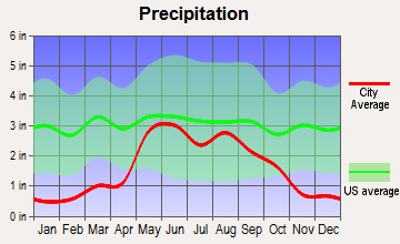 Happy, Texas average precipitation