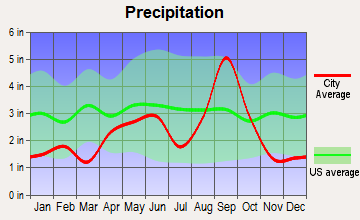 Harlingen, Texas average precipitation