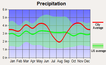 Hawkins, Texas average precipitation