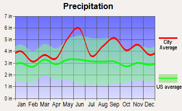 Hedwig Village, Texas average precipitation