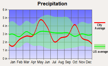 Hudson Oaks, Texas average precipitation