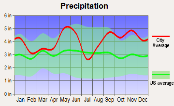 Huntsville, Texas average precipitation