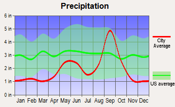 Indian Hills, Texas average precipitation
