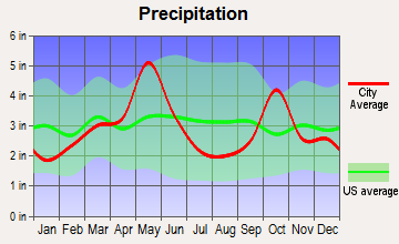 Irving, Texas average precipitation
