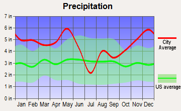 Joaquin, Texas average precipitation