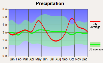 Kaufman, Texas average precipitation
