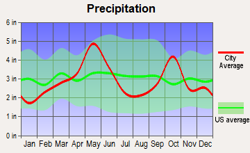 Lake Worth, Texas average precipitation