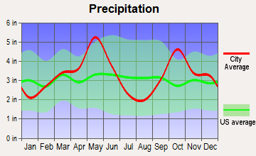 Mobile City, Texas average precipitation