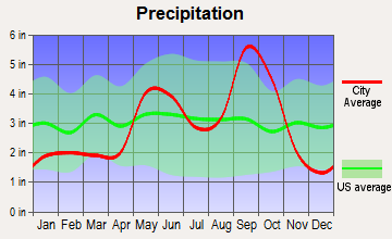 Morgan Farm Area, Texas average precipitation