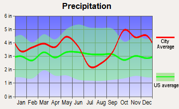 New Chapel Hill, Texas average precipitation