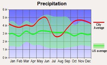 New London, Texas average precipitation