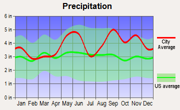 Orchard, Texas average precipitation