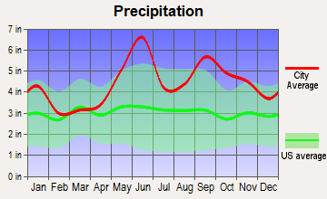 Pearland, Texas average precipitation