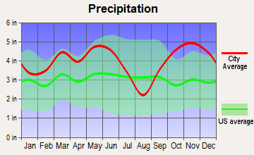 Pittsburg, Texas average precipitation