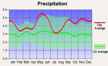 Point Blank, Texas average precipitation