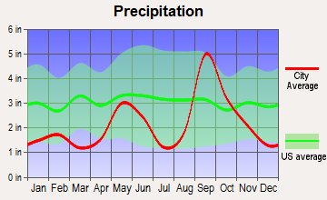 Port Mansfield, Texas average precipitation