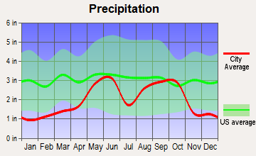 Potosi, Texas average precipitation