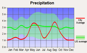 Realitos, Texas average precipitation
