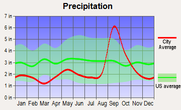 East Cameron, Texas average precipitation