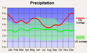 Burkeville, Texas average precipitation