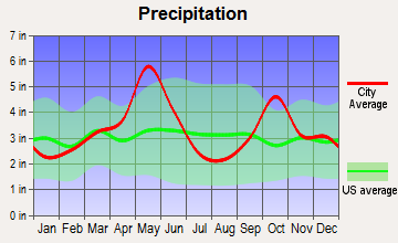Richardson, Texas average precipitation