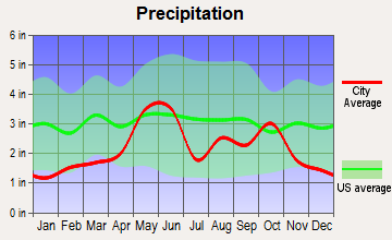 Sabinal, Texas average precipitation
