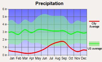 San Elizario, Texas average precipitation