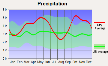 Sulphur Springs, Texas average precipitation